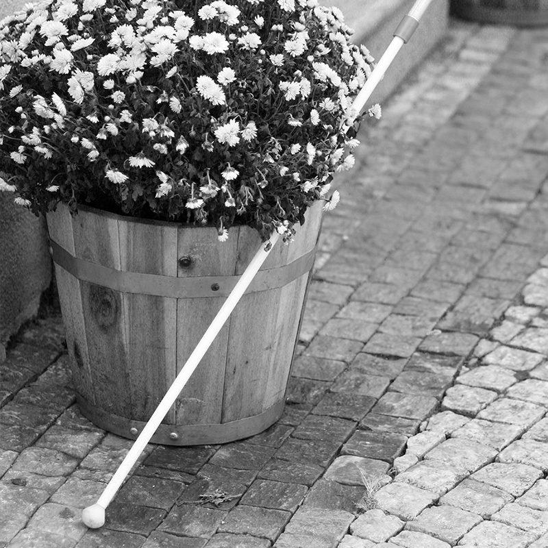 Bílá hůl opřená o květináč